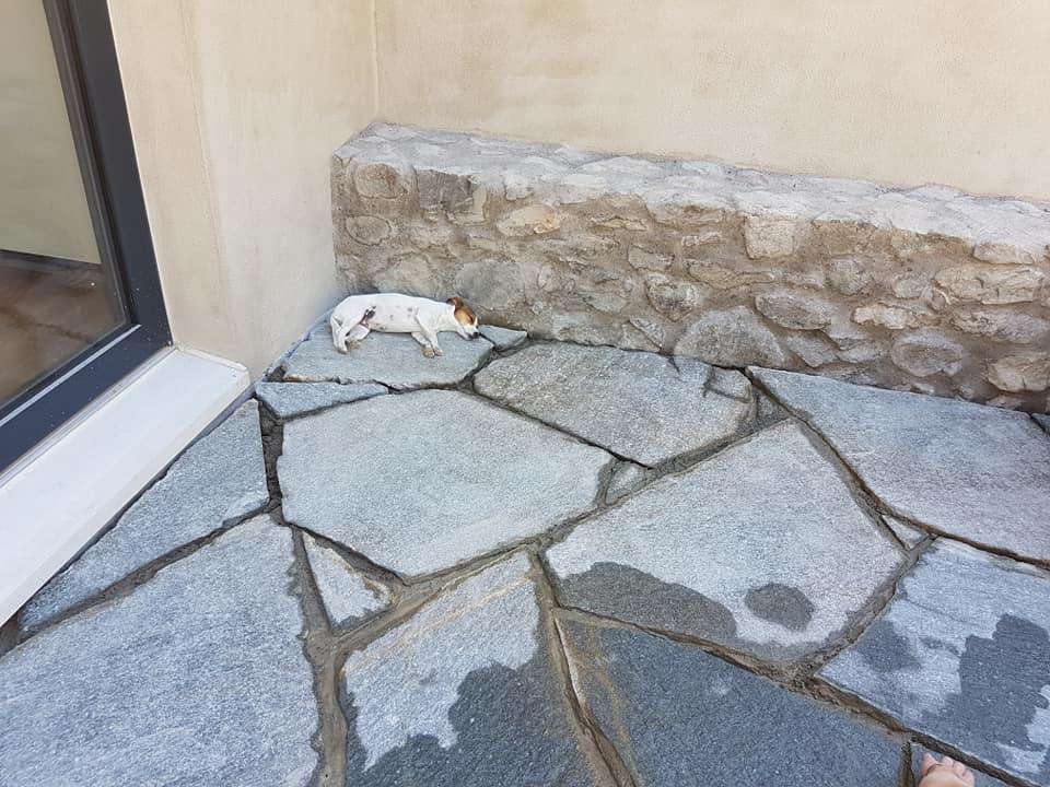 Dallage et mur en pierres à Fully